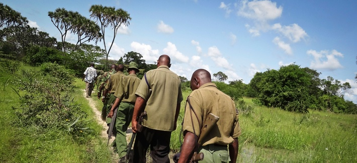 Armed members of the Kenyan security forces march in single file along narrow paths leading through the dense swamp and forest, searching for attackers about 60 miles from the Somali border on the coast of Kenya, June 17, 2014.