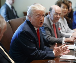 President Donald Trump speaks during a cabinet meeting in the Cabinet Room of the White House, Monday, July 31, 2017, in Washington.