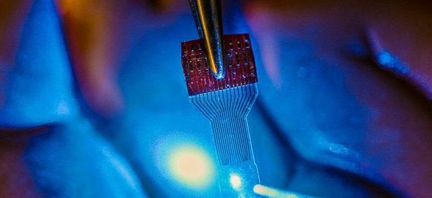 A picture of the graphene-based brain chip used in this experiment.