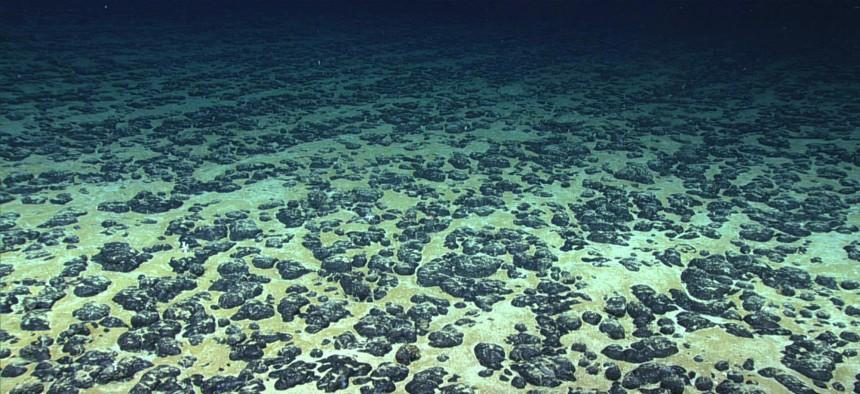 Manganese nodules on the Atlantic Ocean floor, discovered in 2019 during the Deep Sea Ventures pilot test.