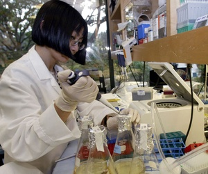 Mei Li, senior scientist at Hollis-Eden Pharmaceuticals, works to develop an anti-radiation drug in 2004.