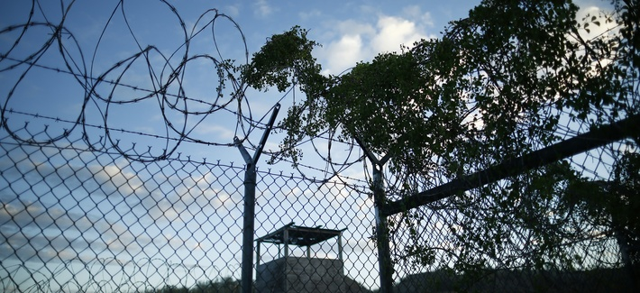 Concertina wire is overgrown with foliage in the now abandoned Camp X-Ray, Guantanamo Bay, Cuba which was used as the first detention facility for al-Qaida and Taliban militants who were captured after the Sept. 11 attacks.