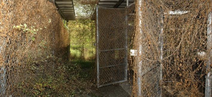 Media tours Camp Delta, Guantanamo Bay, Cuba.