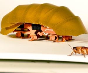 The CRAM robot coachroach from Berkley
