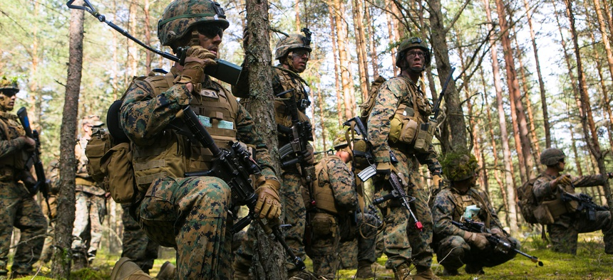 Lithuanian forces are teamed with U.S. Marines from the Black Sea Rotational Force during Exercise Saber Strike at the Pabrade Training Area, Lithuania, June 9, 2015.