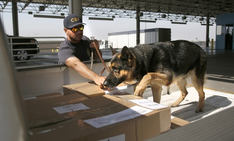 A U.S. Customs and Border Protection officer and his dog screen boxed goods as they are inspected entering the U.S. at the Otay Mesa, Calif., Port of Entry.