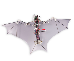 Soon-Jo Chung BATBOT 2 from Caltech's Center for Autonomous Systems and Technologies.
