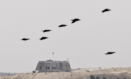 In this Saturday, Nov. 15, 2014, file picture, birds fly backdropped by a building with the Islamic State group flag on top, in the Syrian city of Jarablous, seen from an archaeologic site outside Karkemish, Turkey.