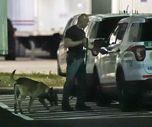 A police officer and dog are shown outside a postal facility on Thursday in Opa-locka, Fla. Investigators searched coast-to-coast Thursday for the culprit and motives behind the bizarre mail-bomb plot aimed at critics of the president.