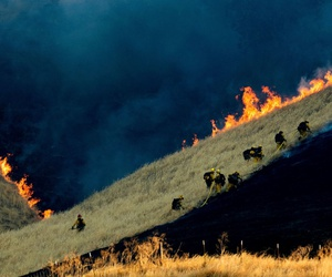 Firefighters battle the Marsh Fire near the town of Brentwood in Contra Costa County, Calif., Aug. 3.