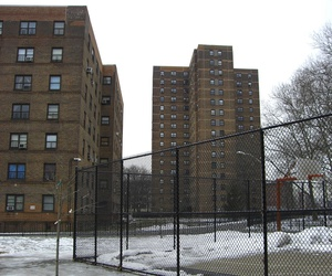 "The Wagner Public Housing complex in New York City. When the authors compared data from 4,000 subsidized housing and market-rate units throughout New York City, finding that the low-income units had ""statistically significant"" higher EUI levels."